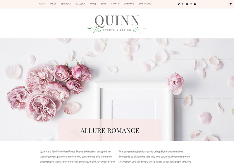 Screenshot of Quinn WordPress Theme